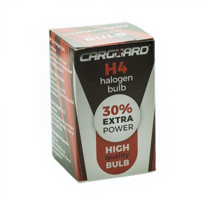 Bec halogen H4 55W Best CarHome