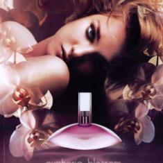 Calvin Klein Euphoria Blossom EDT 30ml pentru Femei