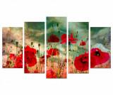 Set 5 tablouri Poppy Field, Charm
