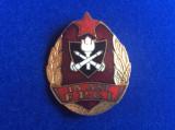 Insignă România - Insignă Pompieri-15 ani FPCI Pompieri -Ministerul de Interne