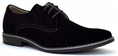 Pantofi barbatesti negri - Elixir foto