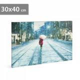 Tablou cu Iluminare LED, Peisaj de Iarna Strada Inzapezita, Baterii 2xAA, 30x40cm