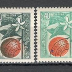 Algeria.1963 Fructe-supr.  SX.229