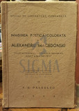IMAGINEA POETICA COLORATA LA ALEXANDRU MACEDONSKI - V. G. PALEOLOGU