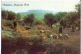 AD 1114 C. P. VECHE -BETHLEHEM, SHEPHERD'S FIELD -IERUSALIM -ISRAEL, Necirculata, Printata