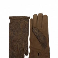 Manusi Etro