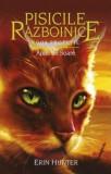 Cumpara ieftin Pisicile Războinice (Vol. 12) Apus de Soare