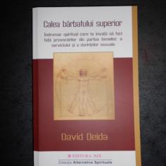 DAVID DEIDA - CALEA BARBATULUI SUPERIOR