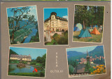 CPIB 15391 - CARTE POSTALA - VALEA OLTULUI, MOZAIC