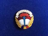 Insigna România - Fruntaș - Evidențiat - Titlul PROFESOR EVIDENTIAT (2)