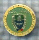 AX 161 INSIGNA VANATOARE SI PESCUIT SPORTIV PERIOADA RSR -A.G.V.P.S -1948-1988