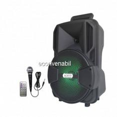 Boxa Portabila cu FM USB SD MIC si Telecomanda Ailiang Lige A811DT