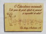 "Cadou personalizat ""Educatoare Minunata"", lemn natur, 15x20cm, Artmis Gift"
