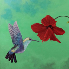 Pictura panza colibri, Pasari, Acrilic, Realism