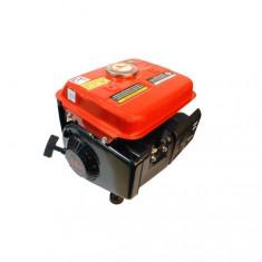 Generator curent 900W Micul Fermier MF-950