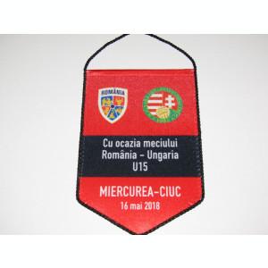 Fanion meci fotbal ROMANIA (U15) - UNGARIA (U15) 16.05.2018