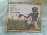 Taina muntelui de alabastru-Anca Balaci
