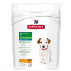 Hill's SP Puppy Healthy Development Mini hrana pentru caini cu pui 1 kg