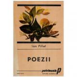 Poezii, Ion Pillat
