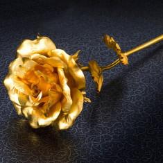 Trandafir poleit aur 24k