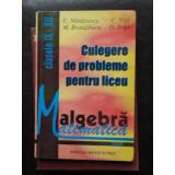 CULEGERE de PROBLEME pt. Liceu cl. IX - XII - C. Nastasescu