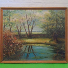 Impresionanta PICTURA  in  ULEI  , semnata GONCZI , cromatica deosebita , tablou