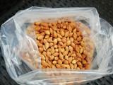 Seminte jujube, curmal chinezesc, cantitate + 50 seminte