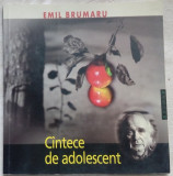 EMIL BRUMARU - CANTECE DE ADOLESCENT (1957-58) [15 desene ADRIANA LUCACIU/2007]