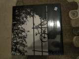 Alexandru andries - desert, disc vinil vinyl electrecord placa pickup