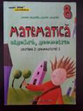 MATE 2000 MATEMATICA ALGEBRA GEOMETRIE CLASA A VIII-A PARTEA I - Negrila