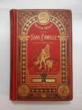 SANS FAMILLE - HECTOR MALOT - Collection HETZEL - 1883 ( SINGUR PE LUME)