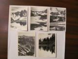 PVM - Lot 8 fotografii vechi tema montana munti 6 cm x 9 cm / probabil Romania
