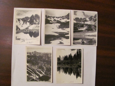 PVM - Lot 8 fotografii vechi tema montana munti 6 cm x 9 cm / probabil Romania foto