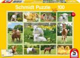 Cumpara ieftin Puzzle Puii animalelor domestice, 100 piese, Schmidt