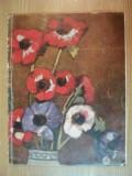 LUMINA SI COLOARE de AL. ROSETTI , ARISTIDE BLANK , IONEL JIANU