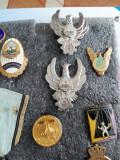Decoratie ,semne aviatie,insigna