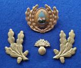 Insigna Militara Ofiter INFANTERIE - Coifura - insemn cascheta  SEMN DE ARMA RSR