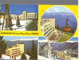 CPI B 12281  CARTE POSTALA - SINAIA. HOTELUL ALPIN COTA 1400, MOZAIC