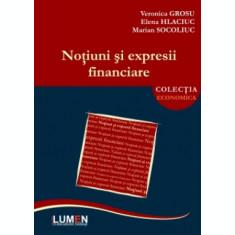 Notiuni si expresii financiare - Veronica GROSU, Elena HLACIUC, Marian SOCOLIUC