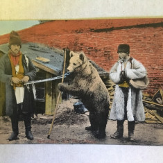 Ursari - Salutări din România, deosebită, rară!
