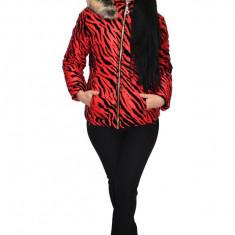 Jacheta moderna din fas cu insertii de catifea, nuanta de rosu