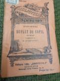 SUFLET DE COPIL DOSTOIEVSKI BIBLIOTECA PENTRU TOTI NR 509 510