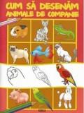 Cum sa desenam animale de companie |