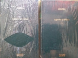 Agonie si extaz- Irving Stone, Adevarul