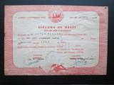 Rar ! Diploma Scolara de Merit din Graniceri (Arad) 1950. Lb. Romana si Germana