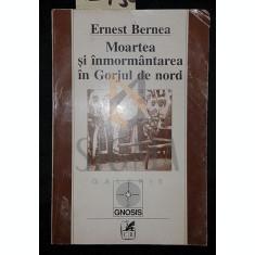 MOARTEA SI INMORMANTAREA IN GORJUL DE NORD - ERNEST BERNEA