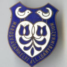 Insigna veche 1930 Liceul romano-catolic din Târgu Mureș MAROSVASARHELY -SUPERBA