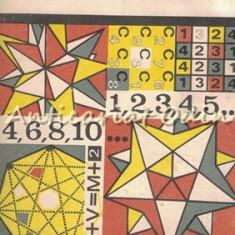 A Doua Carte Cu Probaleme Celebre. Din Istoria Matematicii - Florica T. Campan