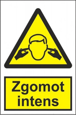 Indicator Zgomot intens - Semn Protectia Muncii foto