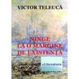 Ninge la o margine de existenta - Victor Teleuca